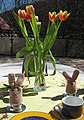 Ostern-Frühling-1-Asio.JPG