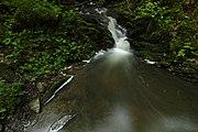 Přírodní rezervace Kavinský potok (19).jpg