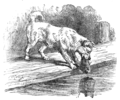 Page 39 illustration to Three hundred Aesop's fables (Townsend).png