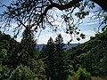 Panorama - panoramio (466).jpg