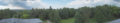 Panorama BialowiezaForest.png