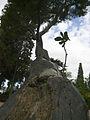 Parc De Montjüic (2928928361).jpg