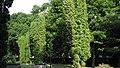 Parcul Central - Bistrita (683292741).jpg