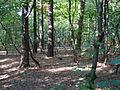 Park Piłsudskiego w Łodzi (5).JPG