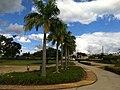 Parque da Cidade - Jundiaí - panoramio (109).jpg