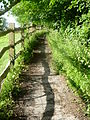 Path in Alfriston 2.JPG