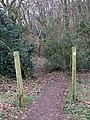 Path into Braid Wood - geograph.org.uk - 1185554.jpg