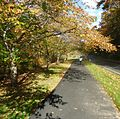 Pathway in autumn in Echo Lake Park in Mountainside New Jersey.jpg
