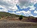 Paulden - panoramio.jpg