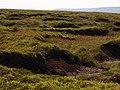 Peat Bog above Alport Dale - geograph.org.uk - 197436.jpg