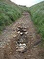 Pennine Bridleway erosion - geograph.org.uk - 885343.jpg