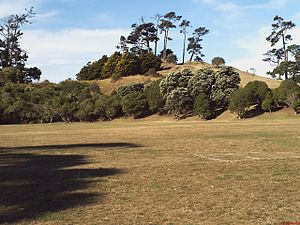 Pigeon Mountain (New Zealand) - Ōhuiarangi / Pigeon Mountain and a small portion of the playing field.