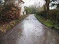 Pinkhurst Lane towards Lyons Road - geograph.org.uk - 1710681.jpg