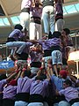 Plaça de Braus de Tarragona - Concurs 2012 P1410429.jpg