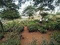 Plant Nursery.jpg