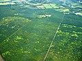Plantacion de mango, cerca de Liberia, Guanacaste - panoramio.jpg