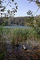 Plitvice Lakes National Park BW 2014-10-13 13-43-44.jpg