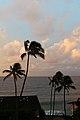 Poipu Coast, Koloa (502715) (16540993497).jpg