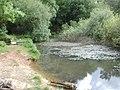 Pond above Darkhill Ironworks - May 2011 - panoramio.jpg