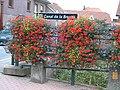 Ponte su Canal de la Bruche 1 - panoramio.jpg