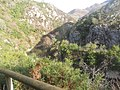 Por los caminos del Sella , cerca de Santillán . - panoramio.jpg