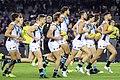 Port Adelaide players running on.jpg