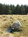 Possible fallen standing stone - geograph.org.uk - 1256913.jpg