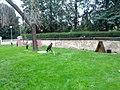 Praha, Královská zahrada, dravci - panoramio.jpg