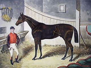 Pretender (horse) British-bred Thoroughbred racehorse