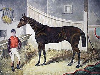 Pretender (horse) - Pretender, by an unknown artist, circa 1869