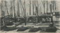 Propellers at Fraternal Cemetery 1925.png
