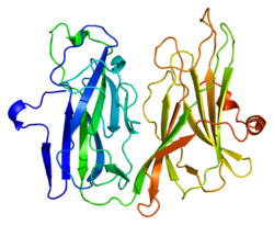 Protein PAM PDB 1opm.png