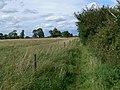 Public Bridleway - geograph.org.uk - 511393.jpg