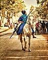 Punjabi horse rider .jpg