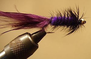 Purple and Black Beadhead Woolly Bugger