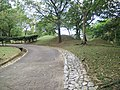 Putrajaya's Botanical Garden 38.jpg