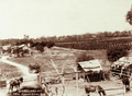 Queensland State Archives 2522 Atkins farm and vineyard Roma Region c 1898.png