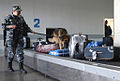 RIAN archive 168825 Baggage check in the airport of Rostov-on-Don.jpg