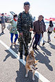 ROC Marine with Visitor's Shiba Inu in Zuoying Naval Base 20141123.jpg
