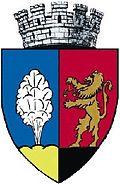 Târnăveni coat of arms