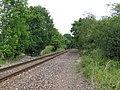 Railway Line near Crampmoor - geograph.org.uk - 17810.jpg