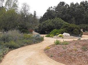 Rancho Santa Ana Botanic Garden - Rancho Santa Ana Botanic Garden