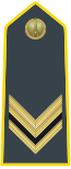 Rank insignia of vice brigadiere of the Guardia di Finanza.svg