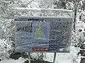 Rare Snow Fall on Mount Difficult Range, Grampians 2.jpg