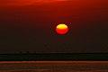 Red Sunset (263826253).jpeg