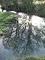 Reflections - geograph.org.uk - 322135.jpg