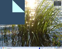 Screenshot of grass growing out of the water