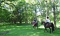 Riding along an ancient track at Ashridge - geograph.org.uk - 1328199.jpg