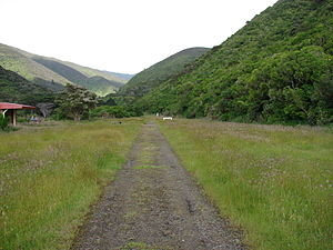 Rimutaka Incline 01.JPG