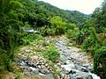 Rio Pellejas - Utuado Puerto Rico.jpg